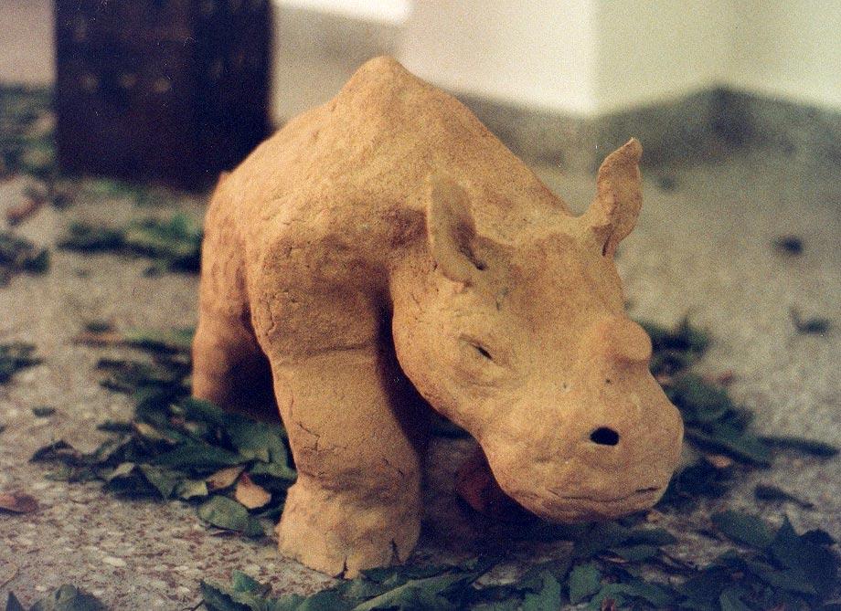Rinocero 1