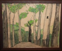 Bosque de baobabs