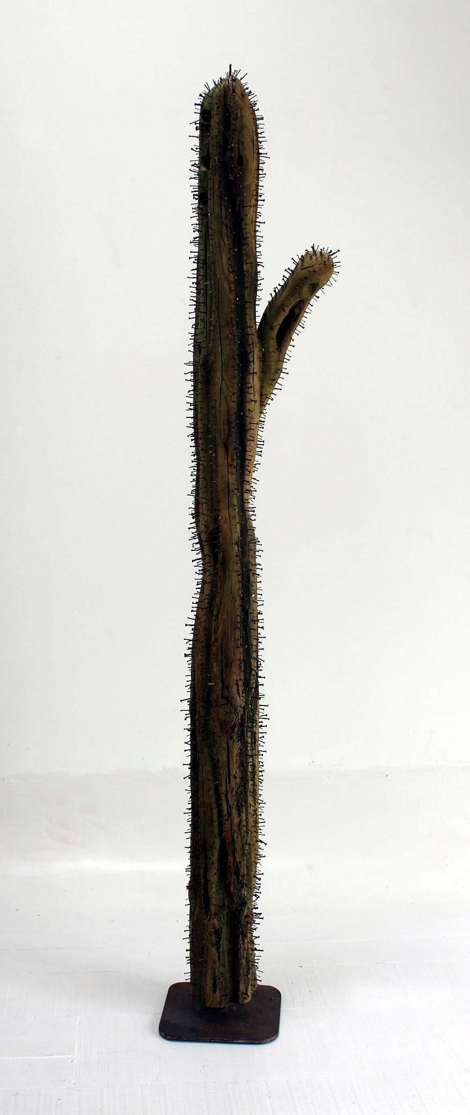 Cactus de clavos