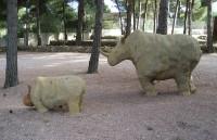 Mamá rino y rino baby